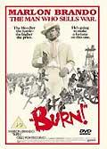 The burn (vo)