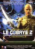 Le cobaye 2 :cyberspace