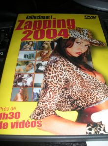 Pure zapping 2004
