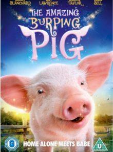 Amazing burping pig