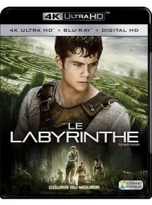 Le labyrinthe - 4k ultra hd + blu-ray + digital hd