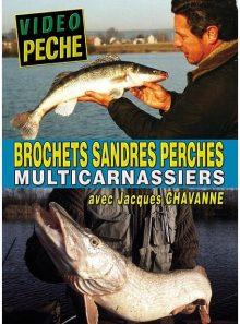 Brochets sandres perches multicarnassiers