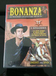 Bonanza 77