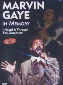 Marvin gaye in memory