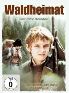 Dvd waldheimat [2 dvds] [import allemand] (import) (coffret de 2 dvd)