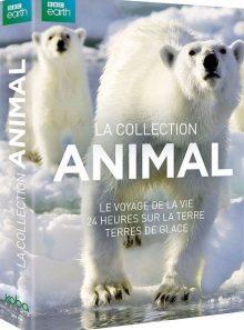 Coffret la vie sauvage : le voyage de la vie + 24 heures sur la terre + terres de glace - pack
